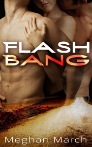FINAL Flash Bang Cover